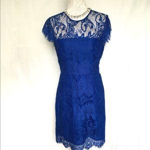BB Dakota // NWT Blue Jayce Lace Sheath Dress 12